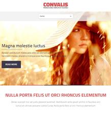 YJ Convalis